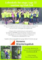 2017 flyer Løbeskole for sjov